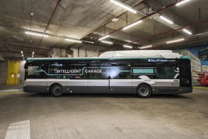 francia busz